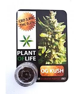 CBD Solid O.G Kush 3,8%