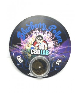 CBD solide - blueberry