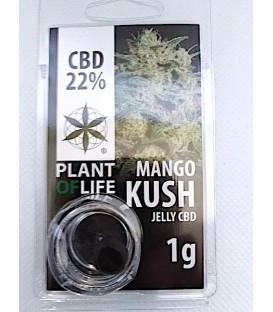 Jelly CBD 22% Mango kush