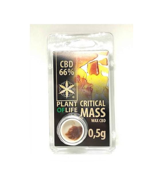 WAX CBD Critical Mass Plant of life 66%