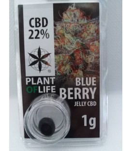 Jelly CBD 22% Blue Berry