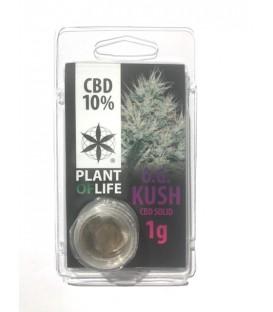 Solid CBD OG Kush 10%