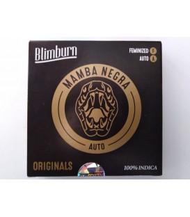 Blimburn seed Mambra Negra auto